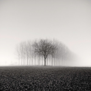 Photo de Pierre Pellegrini prise en Suisse.